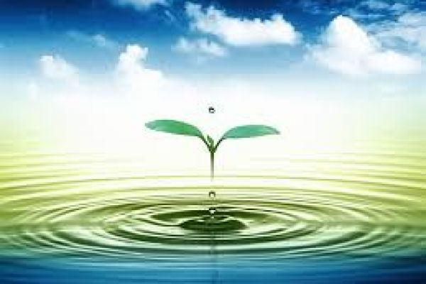 Mỗi ngày gia đình mình tiêu tốn bao nhiêu lít nước ?